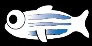 Cartoon zebrafish icon